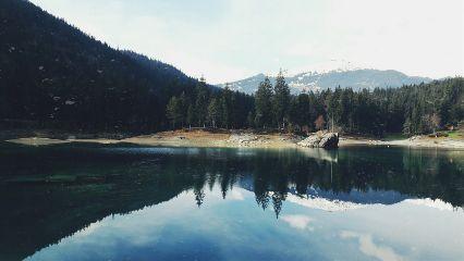 freetoedit nature lake forest