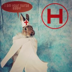 freetoedit rabbit nurse emergency hospital