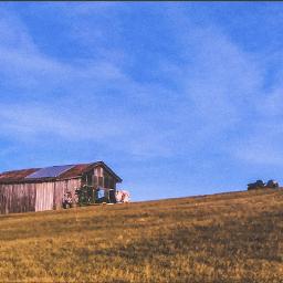 farmlife ruralamerica rural_love backroads tennessee