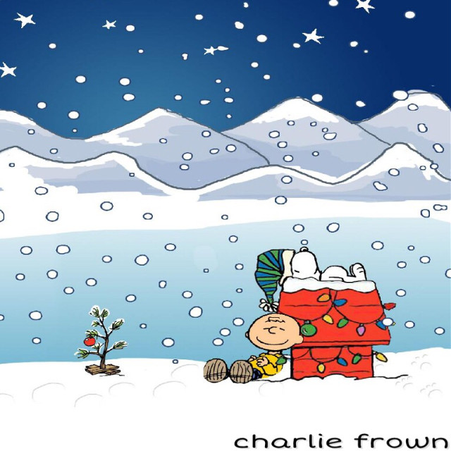 charlie frown #charliebrownchristmas #charliebrown
