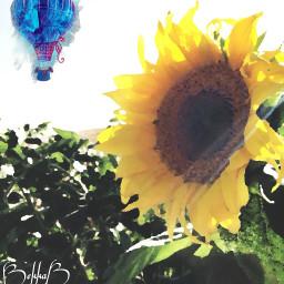 freetoedit watercolorstickers oilpaintingeffect remix