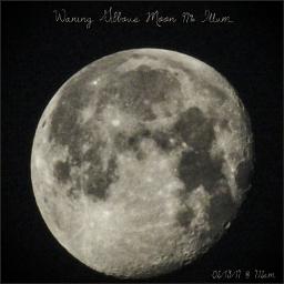 waninggibbous moon naturephotography astrophotography nightphotography