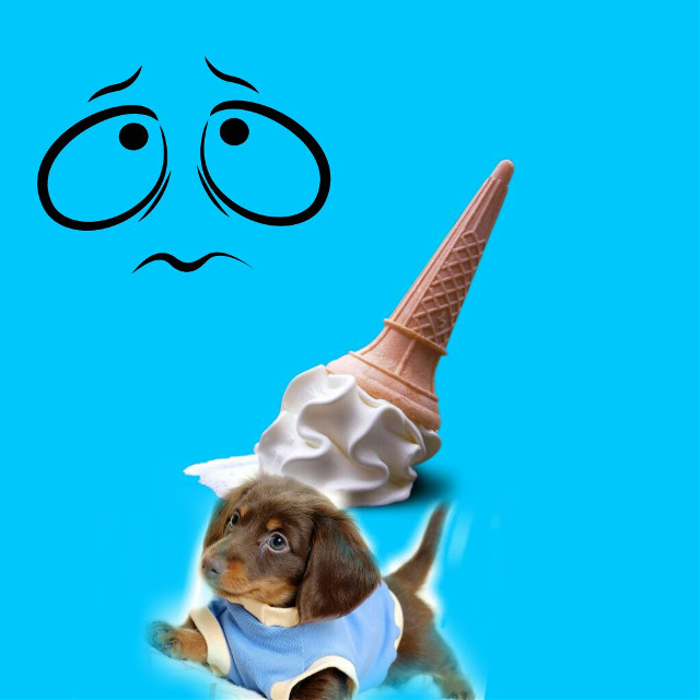 #FreeToEdit  #dog  #icecream  #badluck