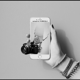 madewithpicsart #freetoedit danbo popout outofframe camera freetoedit