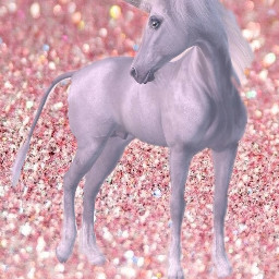unicornday freetoedit